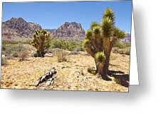 Red Rock Canyon Cactus Trees Nevada. Greeting Card by Gino Rigucci