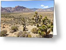 Red Rock Canyon Landscape Nevada. Greeting Card by Gino Rigucci