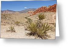 Red Rock Canyon Nevada. Greeting Card by Gino Rigucci