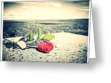 Red Rose 1  Greeting Card by Stephen Melcher