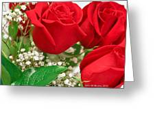 Red Roses With Baby's Breath Greeting Card by Ann Murphy