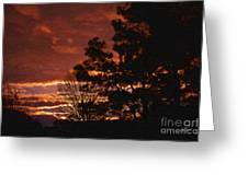 Red Sky At Night Greeting Card by Cris Hayes