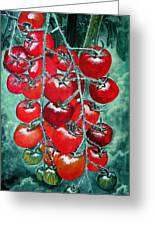 Red Tomatos Greeting Card by Huy Lee
