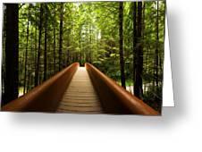 Redwood Bridge Greeting Card by Chad Dutson