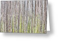 Reeds Background Greeting Card by Tom Gowanlock