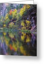 Reflected Fall Greeting Card by Peter Coskun