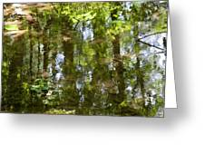 Reflection Of Woods Greeting Card by Sonali Gangane