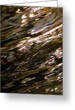 Reflections Greeting Card by C Ray  Roth
