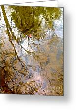 Reflections Greeting Card by Delona Seserman