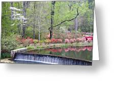 Reflections Greeting Card by Eggers   Photography