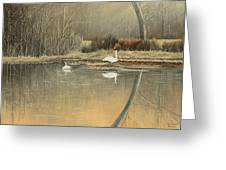 Reflections Greeting Card by Mary Ann King