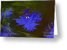 Reflections Of A Flower Greeting Card by Carol Lynch
