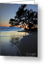Reflections Of One Greeting Card by Mike  Dawson
