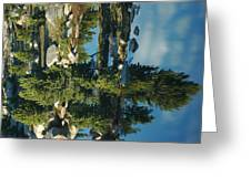 Reflections Of Yellowstone Greeting Card by Larry Moloney