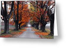 Reid's Orchard Drive Greeting Card by Wendell Thompson