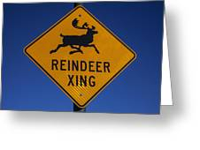 Reindeer Xing Greeting Card by Garry Gay