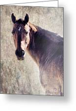 Reliability Greeting Card by Betty LaRue