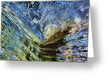 Resistance Is Futile Greeting Card by Gary Holmes