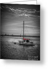 Rest Day B/w Greeting Card by Marvin Spates