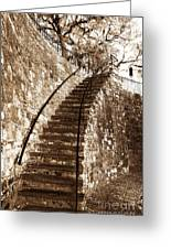 Retro Stairs In Savannah Greeting Card by John Rizzuto