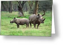 Rhino Family Greeting Card by Sebastian Musial