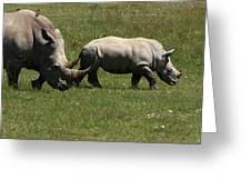 Rhinoceros Greeting Card by Aidan Moran