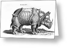 Rhinoceros no 76 from Historia Animalium by Conrad Gesner  Greeting Card by Albrecht Durer