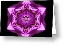 Rhododendron Ponticum Roseum I Flower Mandala Greeting Card by David J Bookbinder