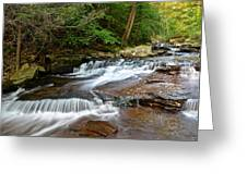 Ricketts Glen Greeting Card by Frozen in Time Fine Art Photography