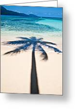 Rincon Shadow Greeting Card by Renee Sullivan