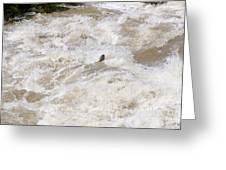 Rio Grande Kayaking Greeting Card by Steven Ralser