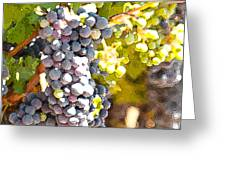 Ripe Grapes Greeting Card by Artist and Photographer Laura Wrede