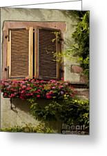 Riquewihr Window Greeting Card by Brian Jannsen