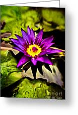 Rise And Shine Greeting Card by Scott Pellegrin
