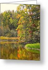 River In Fall Greeting Card by Rhonda Humphreys