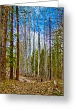 River Run Trail At Arrowleaf Greeting Card by Omaste Witkowski