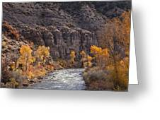 River Through The Aspen Greeting Card by David Kehrli