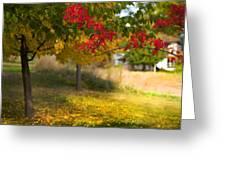 Riverbend Orchard Greeting Card by Theresa Tahara