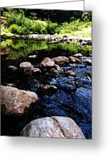 Riversong Greeting Card by Lucy D