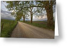 Road not Traveled II Greeting Card by Jon Glaser