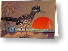 Road Runner At Sundown Greeting Card by Bob Coonts