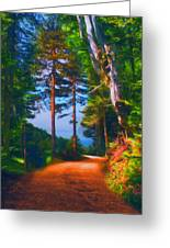 Road Through The Forest Greeting Card by Sasa Prudkov