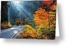 Road To Glory  Greeting Card by Lynn Bauer