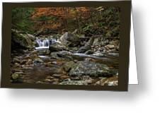 Roaring Brook - Sunderland Vermont Autumn Scene  Greeting Card by Thomas Schoeller