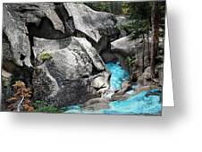 Roaring Fork Greeting Card by Ric Soulen