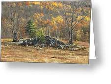 Rock Pile In Maine Blueberry Field Greeting Card by Keith Webber Jr