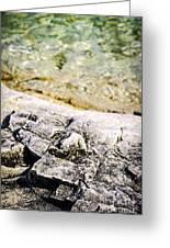 Rocks At Georgian Bay Greeting Card by Elena Elisseeva