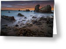 Rocky California Beach Greeting Card by Larry Marshall