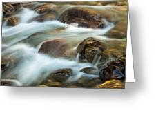 Rocky Flow Greeting Card by Joan Herwig