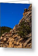 Rocky Ledge With Moon And Trees In Background And Foreground Greeting Card by Pedro I Orta